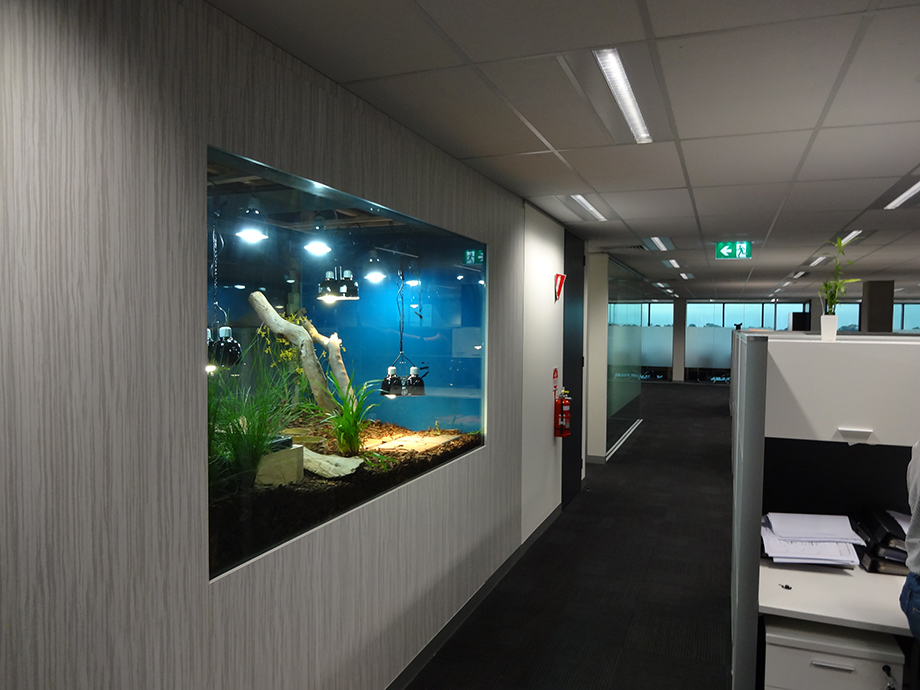 wall panel office fit out melbourne